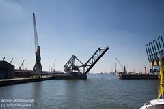 Flandria Havenrondvaart [5] (Werner Wattenbergh) Tags: flandria ferry schip veerboot antwerpen belgie bel