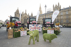 Back British Farming Day (NFU pics) Tags: backbritishfarming farming nfu food buybritish mps housesofparliament london westminster