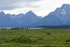 Lush (Marisa Sanders Photography) Tags: tetons grandtetons thegrandtetons nps np gtnp grandtetonnationalpark canon canon7d explore outdoors outside gtfoutside gtfoutdoors landscape photography lake