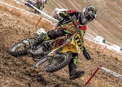 P319934 (Roberto Silverio) Tags: cross motocross motorsport colors suzuky yellow giallo piemonte italy asti jack 117 olympuscamera olympusphotography love light dust open zuikolens zuikodigital sport opensport