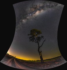 Milky Way over Banchory Farm - Queensland - Australia (andrew.walker28) Tags: milky way stars galaxy galactic centre center core starlight night long exposure nightscape landscape dark light pollution queensland australia cambooya