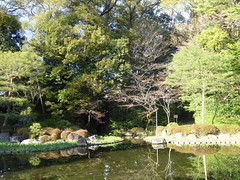 Pond in the sunlight (seikinsou) Tags: japan kyoto spring heian shrine park garden pond tree refelction
