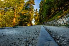 IMG_20160827_C700D_025HDR.jpg (Samoht2014) Tags: bahn gleise gornergrat riffelalb schweiz wald wallis zermatt