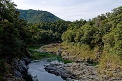 Pelorus Bridge Scenic Reserve