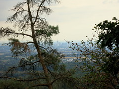 IMG_9744 (craigharrisnelson) Tags: oberursel frankfurt skyline hiking nature trees