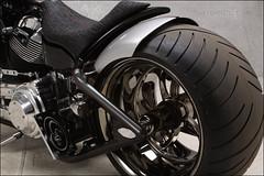 bikes-2009world-011-d-l