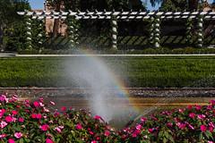 Jardn de Cecilio Rodrguez (Pablo Rodriguez M) Tags: madrid espaa spain parque park retiro buenretiro byn bw arcoiris rainbow