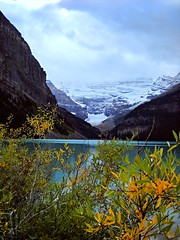 Autumn in the Rockies (Jessie T*) Tags: glacier lakelouise lake canadianrockies banffnationalpark autumn