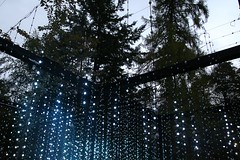 2016 - 14.10.16 Enchanted Forest - Pitlochry (34) (marie137) Tags: enchanted forest pitlochry mobrie137 scotland lights music people water reflection trees shows food fire drink pit patter shapes art abstract night sky tour family walk path bells smoke disco balls unusual whisperer bridge wood colour fun sculpture day amazing spectacular must see landscape faskally shimmer town
