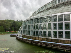 160928 Kyoto trip-06.jpg (Bruce Batten) Tags: flowers plants subjects buildings lakesponds businessresearchtrips gardensarboreta nymphaeaceae trees locations trips occasions honshu kyoto rain japan lighthouses kytoshi kytofu jp reflections