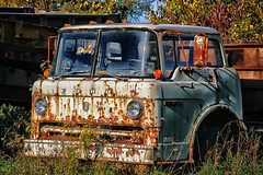 Where old Fords go to die (KWaterhouse) Tags: truck autowreckers junkyard scrapyard ford old abandoned forgotten rust rusty ontario canada nikond5300