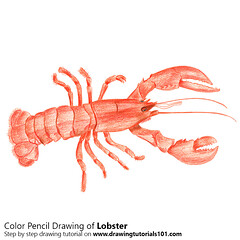 Lobster with Color Pencils [Time Lapse] (drawingtutorials101.com) Tags: lobster lobsters animals crustaceans nephropidae sketching pencil sketch sketches drawing draw speeddrawing timelapse timelapsevideo coloring color how