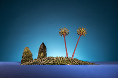 Island (William John Cooper) Tags: studio studiolighting lighting flash tabletop tabletopphotography still stilllife art fineart food paper landscape miniature model tropical tree plant palm plamtree palmtrees palmtree blue bluesky blueskys sky island islands