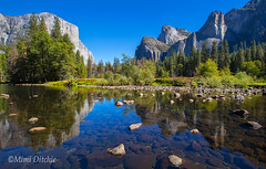 Classic Yosemite Valley View (Mimi Ditchie) Tags: easternsierra fall fallcolor yosemite yosemitenationalpark valleyview yosemitevalleyview merced mercedriver elcapitan reflections