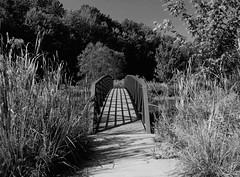 Black and White Bridge (btn1131 www.needGod.com) Tags: bridge landscape jesusisthebridgetolife mono bw blackandwhite summer outside outdoors