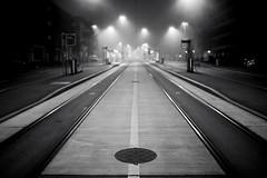 (Toni_V) Tags: m2401401 rangefinder digitalrangefinder messsucher leica leicam mp type240 typ240 35lux 35mmf14asph 35mmf14asphfle summiluxm blackwhite bw schwarzweiss monochrome sep2 silverefexpro2 niksoftware birmensdorferstrasse vbz station fog nebel mist perspective zurich zrich sundaymorningphototour switzerland schweiz suisse svizzera svizra europe haltestelle tramhaltestelle toniv 2016 160925