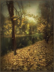 Autumn . (odinvadim) Tags: landscape iphoneonly evening clouds iphoneart iphoneography autumn painterlymobileart enteredinsyb iphone country rural pond forest art obninsk travel instapickskyart old textured river