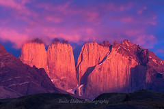 Torres sunrise (1 of 1)-3 web (Dalbecphoto) Tags: torresdelpaine patagonia chile mountains sunrise pink