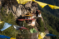 Taktshang (whitworth images) Tags: painted building sacred buddhist himalaya himalayas bhutan religion buddhism cave steep spiritual cliff bhutanese rock goemba asia pilgrimage dangerous stone white travel perched taktshang landmark red tigersnest religious temple precarious gompa lhakhang site monastery flags roof architecture high prayerflags mountain prayer traditional