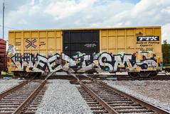 (o texano) Tags: houston texas graffiti trains freights bench benching wyse weezisms d30 defthreats dts adikts a2m