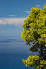 Blue and green (Thomas Mulchi) Tags: westcoast lefkada ionianislands greece 2016 sea azure summer humid hot notphotoshopped tree green colors peloponnisosdytikielladakeio peloponnisosdytikielladakeionio gr