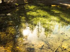 upside down... (christophebiget) Tags: eaux cascades