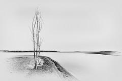 Lake Sakakawea Sunset 1.1 (Jack Lefor) Tags: minimal minimalism sunset water lake monochrome landscape scenic nature nikon nikond810 northdakota blackandwhite fineart
