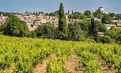 Provence wineyard (werner boehm *) Tags: werner boehm provence france wineyard village