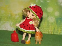 IMG_4763 (cat-soft paws) Tags: realpuki spitz dog case suitcase joy laughter smile soso sundress panama green yellow red watermelon mood