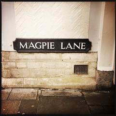 Magpie Lane (breakbeat) Tags: hipstamatic oxford instameet instagrammeetup photowalk city hipstamaticapp text sign street magpielane wall airbrick
