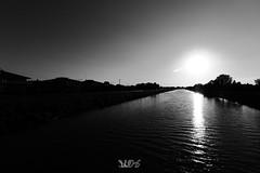 Panorama sul Bacchiglione da Ponte IV Martiri, Padova (Davide Anselmi) Tags: acqua bacchiglione biancoenero bianconero blackandwhite blackwhite bn bw fiume padova panorama ponte4martiri ponteivmartiri pontequattromartiri davideanselmi 2016