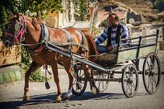 Security guard (Melissa Maples) Tags: ortahisar turkey trkiye asia  nikon d5100   nikkor afs 18200mm f3556g 18200mmf3556g vr kapadokya cappadocia animal horse turk man driver carriage trkiye