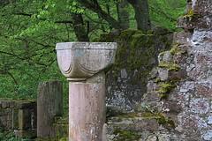 20130501-065F (m-klueber.de) Tags: ruine klosterkirche romanisch unterfranken spessart kapitell 2013 mainfranken schnrain mkbildkatalog 20130501 20130501065f