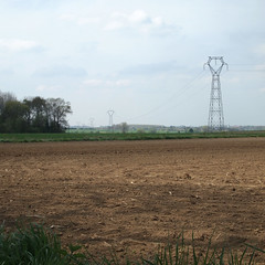 Champ lectrique (L'imaGiraphe (en travaux)) Tags: france field outdoor potato squareformat plantation hd agriculture extrieur nord 59 champ pommedeterre patate formatcarr marachage villerspol tournichette