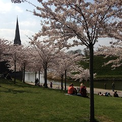 How more romantic can it be? (Ariadni's Thread) Tags: love copenhagen denmark spring couple picnic romance romantic mermaid krlighed sterport dejligt kreste hyggeligt ariadnisthread