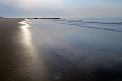 Morning on the beach at low tide (runneralan2004) Tags: newjersey capemay