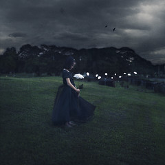 The Last Goodbye (mike.alegado) Tags: white black girl cemetery rose last death petals 365 goodbye 365days
