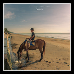 Hot Earth (HakWee) Tags: boy horse beach sunrise thailand huahin