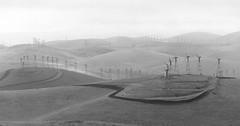 Altamont Wind Farm (bior) Tags: california blackandwhite bw 120 film mediumformat landscape pentax hills 300mm hillside livermore ilford rollinghills windfarm altamont panf windturbines pentax645 filmphotography altamontpass panfplus ilfordpanfplus50 panfplus50 brushypeak 6x45cm pentax645nii altamontwindfarm brushypeakregionalpreserve smcpentaxa64514300mmefif