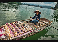 Boat vendor in Halong Bay, Vietnam (jitenshaman) Tags: travel cruise vacation holiday tourism asian bay boat asia vietnamese sailing commerce sightseeing shell unescoworldheritagesite unesco vietnam souvenir shellfish sail destination vendor oriental orient sell crustacean roar luxury halong halongbay conch conchshell worldlocations watersea