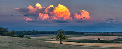 A view from Greenwood Hill (virgil martin) Tags: panorama clouds sunset lonetree greenwoodhill olympusomdem5 wellesleytownship waterlooregion ontario canada oloneo gimp microsoftice