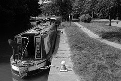 Tow Path river Stort Harlow Essex (strawberrymouseman) Tags: steve henson strawberrymouseman water blackandwhite boats barges river canal waterways watersports wives girlfriend wife monochrome