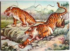 2 wilde Tiger (Leonisha) Tags: puzzle jigsawpuzzle wooden holzpuzzle tiger tigers fierce wild