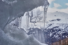 Ice Sculpture (christophwagner) Tags: geiranger fjord norwegen water ice elements drops figures scultpure tree nature landscape outdoor waterfall hanging wasserfall eis blau blue weis white snow schnee berge mountains