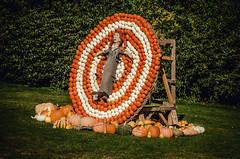 Risk (Melissa Maples) Tags: ludwigsburg germany europe nikon d5100   nikkor afs 18200mm f3556g 18200mmf3556g vr residenzschloss palace blhendesbarock garden summer krbisausstellung pumpkins pumpkin festival sculpture art circus woman bullseye target