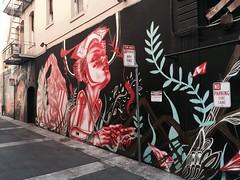 San Francisco art, Iphone 6 (Celeste_Netherlands) Tags: art graffity hot hostel urban wanderlust coast pier39 francisco exploring nature streetart color