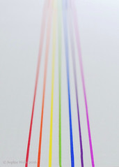 Wk40/52 - Converging Vertical Lines (sopwell287) Tags: rainbow color colour converginglines nikon d60 sharpies bright colourful wk4052 522016 522016edition lines