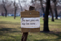 """""""Don't pee on me Im new"""" (dharder9475) Tags: 2015 palmersquare park pee privpublic sign"""