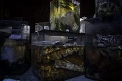 That room again..... (Alpha Rios) Tags: dnrurbex donotresuscitate dnr 2026 rios alpha urbex urbanexploration ue labs horror horrorlabs