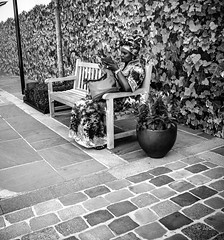 camouflage (Jack_from_Paris) Tags: p8280869bw olympus omd em5 pancake14mmf25asph wide angle lightroom capture nx2 monochrom noiretblanc bw paris street city rue trottoir dcor se fondre dans le camouflage femme woman banc bench candid